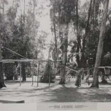 "Sequoia High School of Redwood City, CA. ""The Atomic Loop"" obstacle course designed by Physical Educator Frank Griffin in the 1940s."